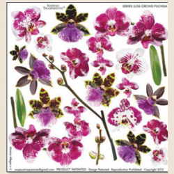 024_pattern_orchid_fusschia_STS-PRINT-250x250